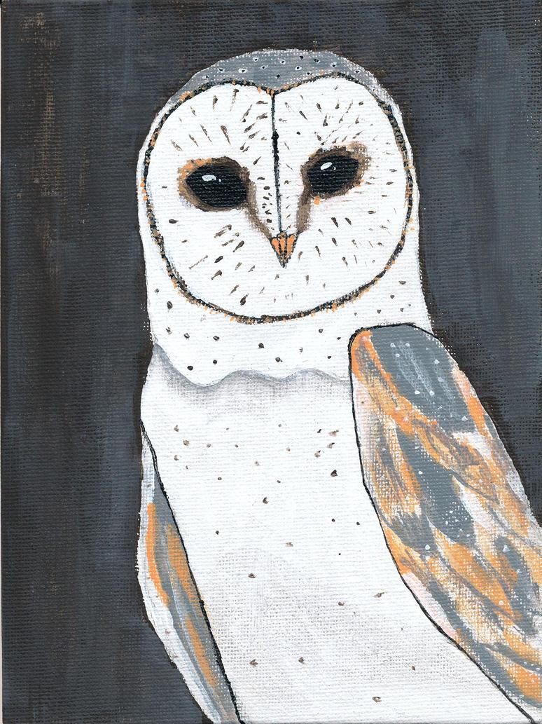 Barn Owl by corpakneazle