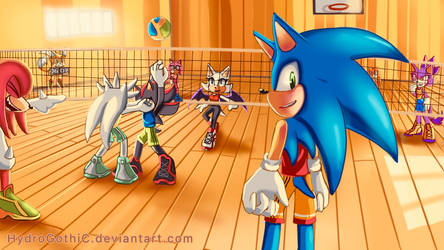 Sonic and friend:Playing volleyball