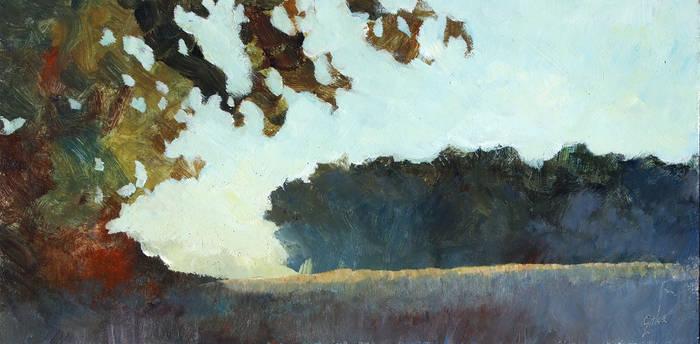 Twilit Woods