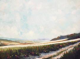 Sun Lit Fields and a Farm Lane by litka