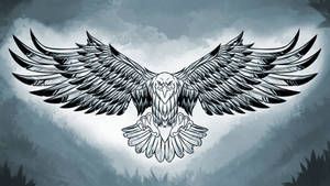 Bald eagle lineart