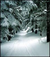 Snowy road by Jack6677