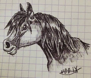 Pony by DeckyV-2