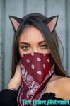 Masked kitten by TheFelineAlchemist