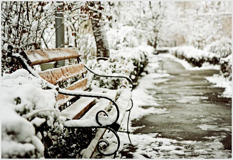 7. :Winter Fairytale: by bittersweetvenom