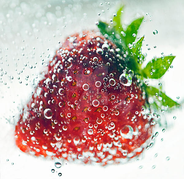 Strawberry II by bittersweetvenom