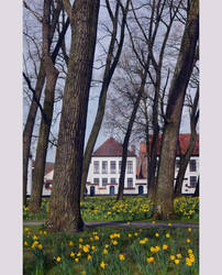 |11| Beguinage by bittersweetvenom