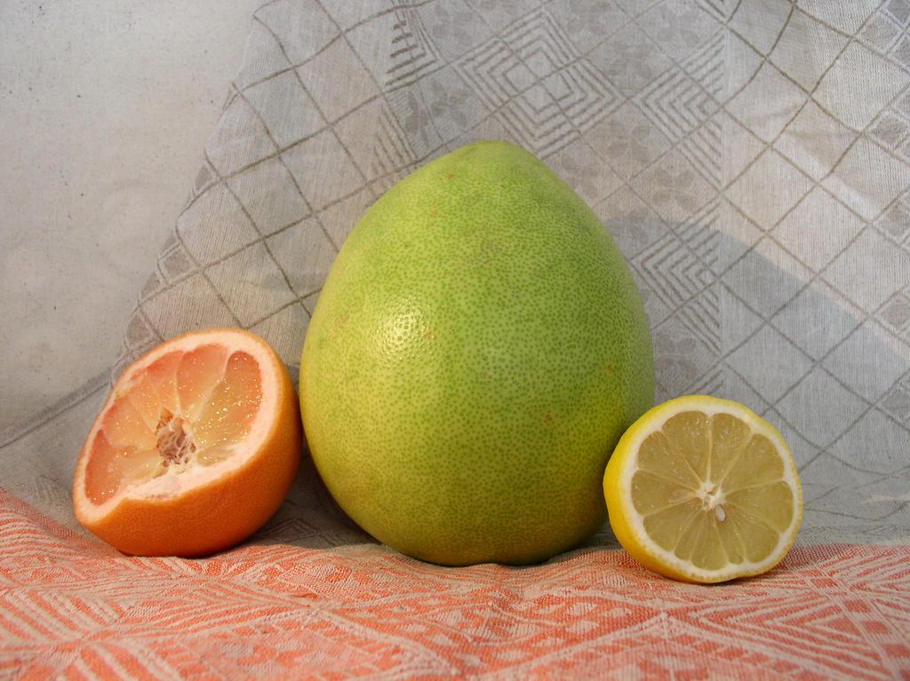 Fruit Composition 9 by SanStock