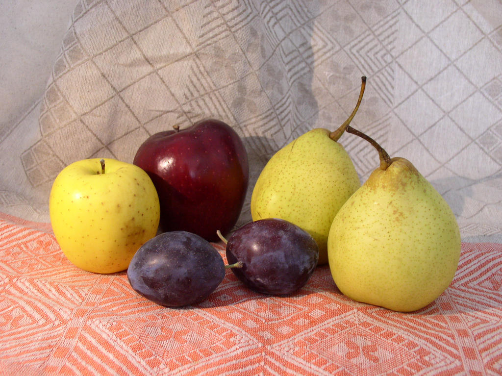 Fruit Composition 14 by SanStock