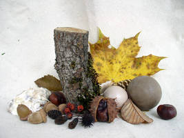 Fall Composition 2 by SanStock