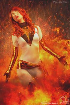 Phoenix Risen by Kavizo