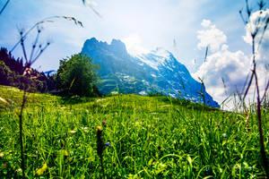 Zwitserland by ChristinaKingma