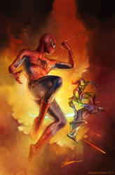 Spider-Man and The Green Goblin (By Shannon Maer)