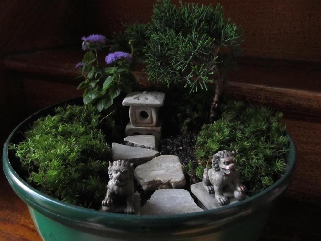 miniature asian garden