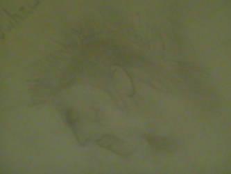 Mowhawk - 2006 by CayleRose