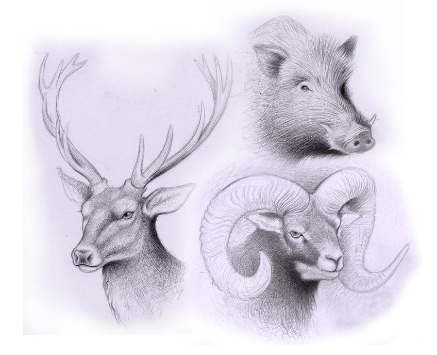 animals sketch by Lonx...