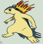 Typhlosion Pokesona Body Shot