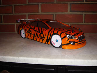 RC Shell (Tiger Print) by NuttsnBolts