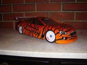 RC Shell (Tiger Print)
