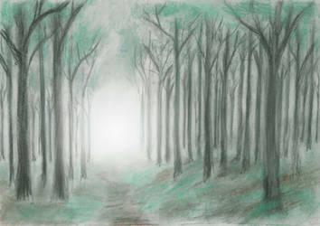 Misty Wood by MatejCadil
