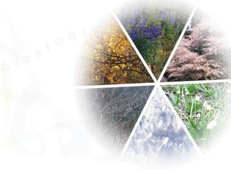 Six Seasons by MatejCadil