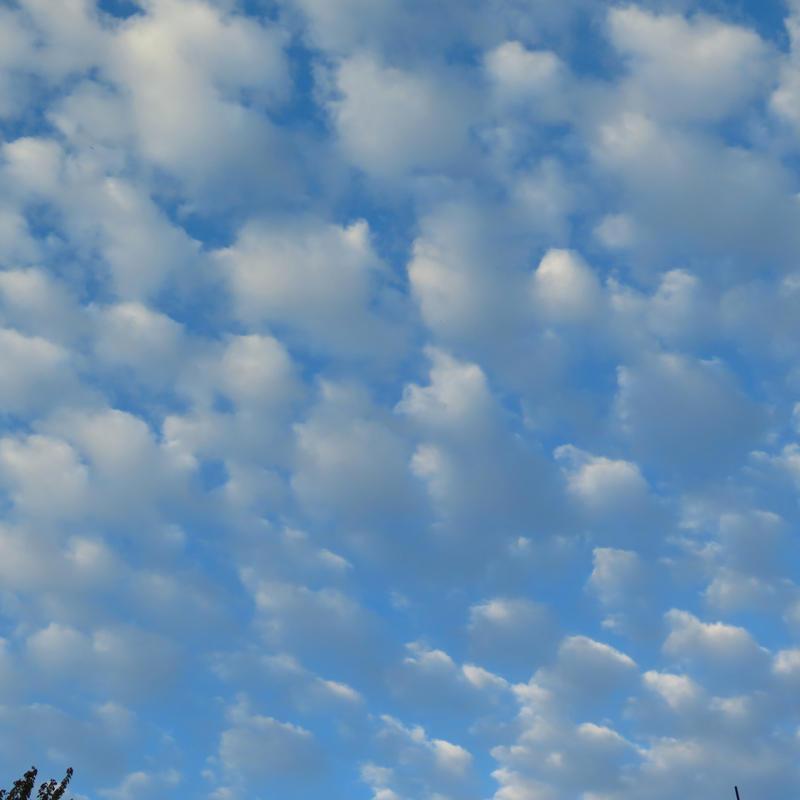 polka dot sky by Nipntuck3