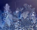 Jack frost was here......