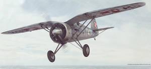 Seagull wings (PZL P11c)