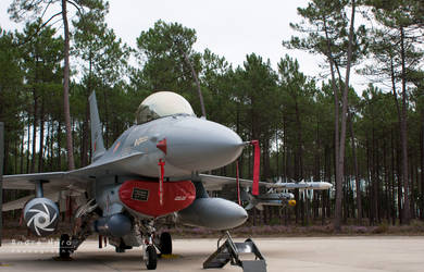 15114 - F-16A - FAP