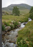 Mountain Stream III by WDH-Stock