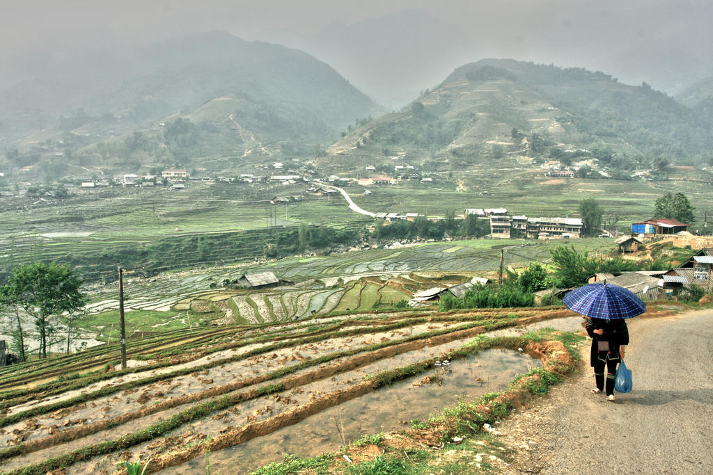 Fields of Sapa by Aqutiv