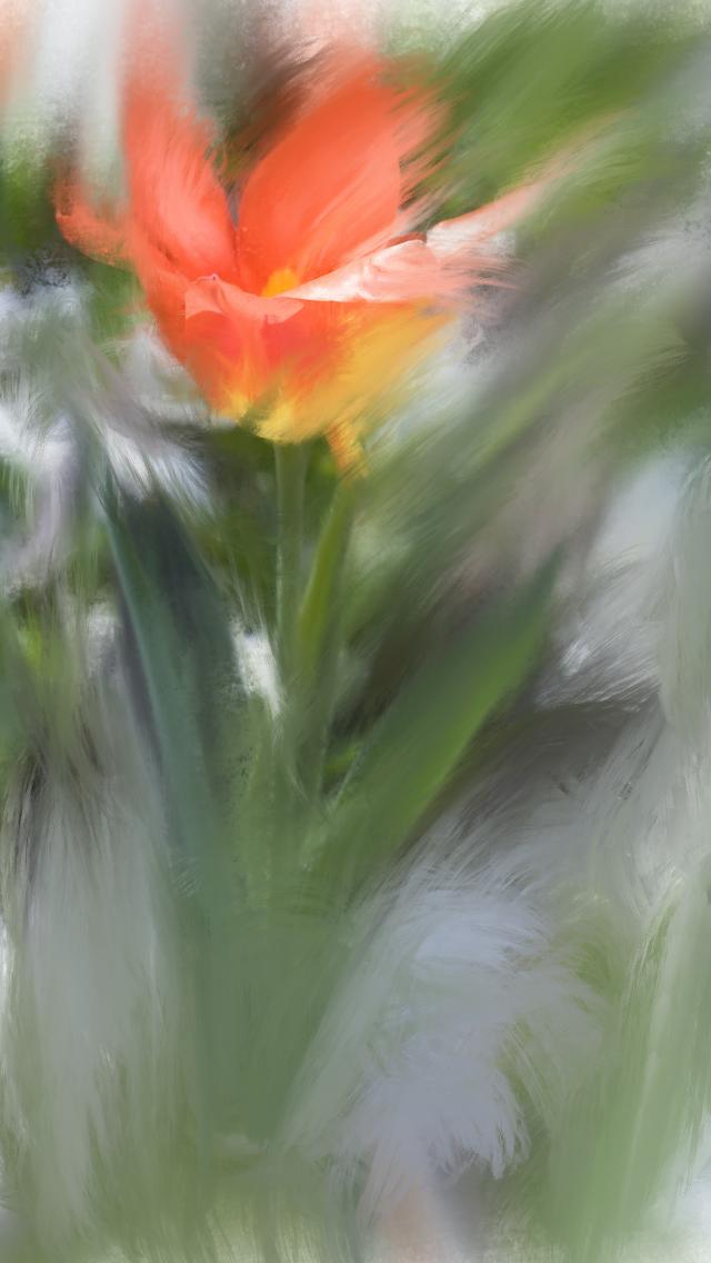 Glass Flower by Aqutiv