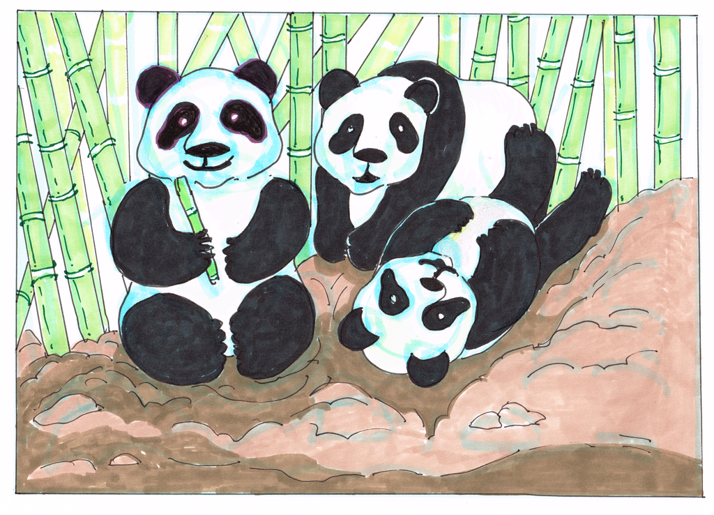 Animals - Pandas at play 250dpi by exclusivelysu