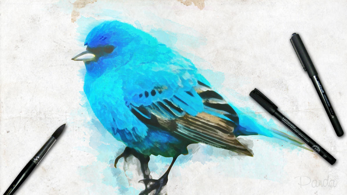 A blue bird by staphylococcal
