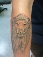 Lion Tattoo by Marshall-Harris