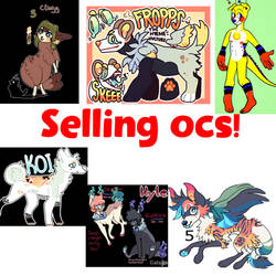 Selling Ocs (added another)