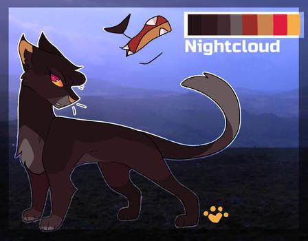 Nightcloud