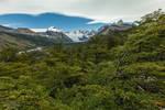 Half Way to Cerro Torre - Argentina, Patagonia