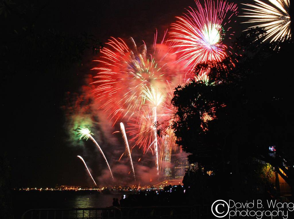 2015 New Year's Eve - Hong Kong by dwang026