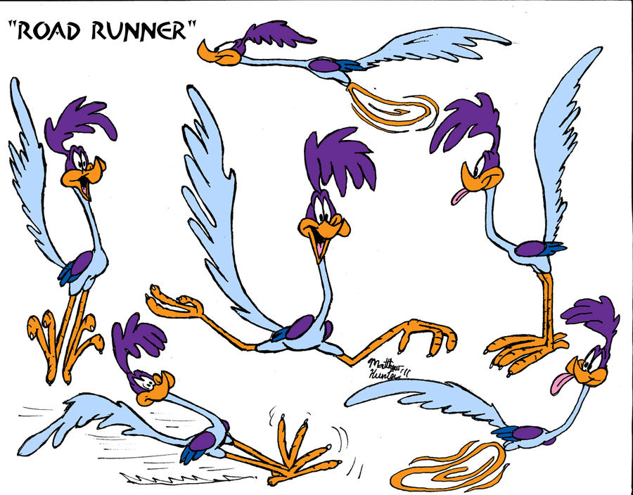 road runner model sheet by matthewhunter on deviantart rh deviantart com Road Runner Pictures to Print Road Runner Cartoon