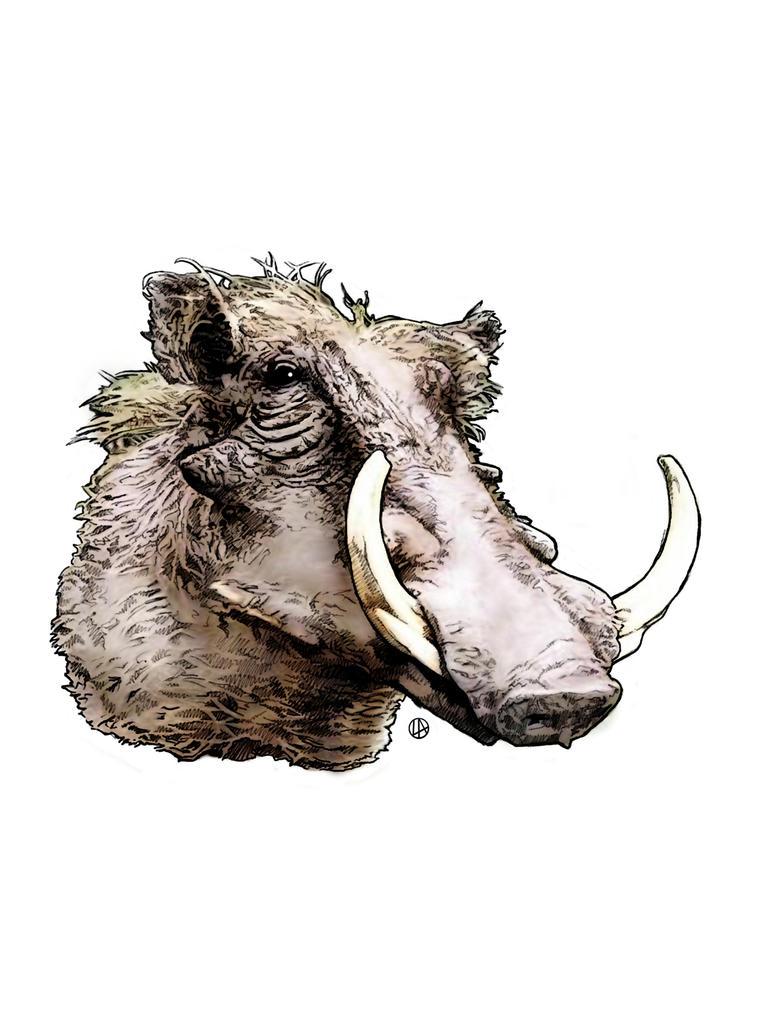Warthog by DUST-N-SHADOW