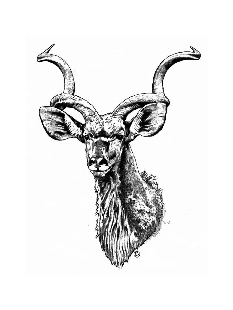 kudu4U2 by DUST-N-SHADOW