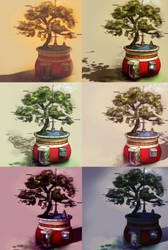 The Tree Pot by morning