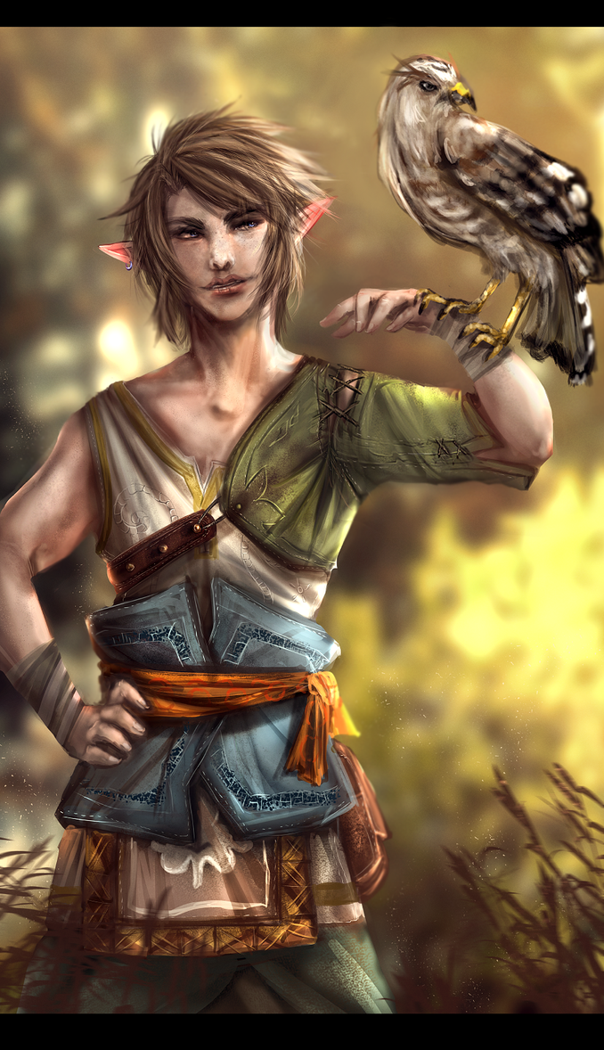 Ordon Link by Tiffany-Tees