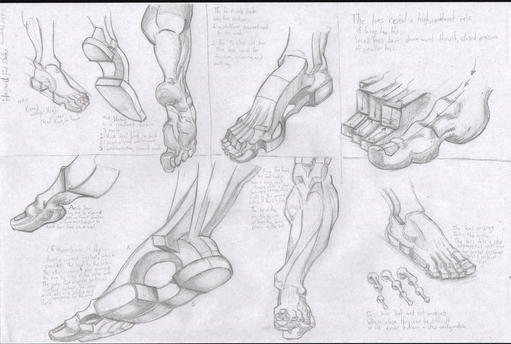 Hogarth Foot Studies by mantisazure on DeviantArt