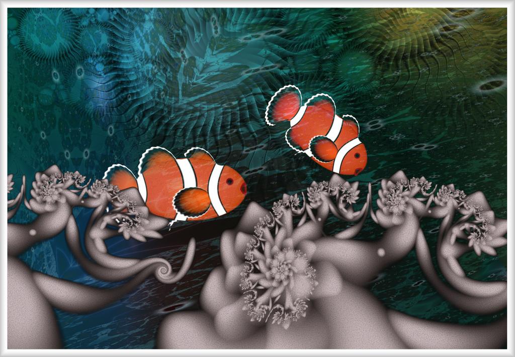 Nemo Found by AntiCollegiality