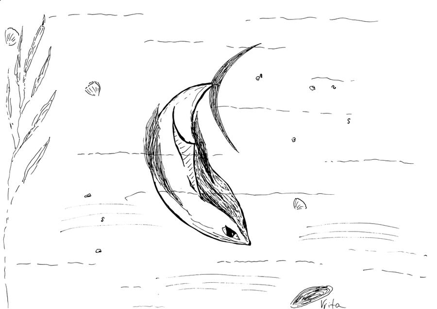Fish with eyes