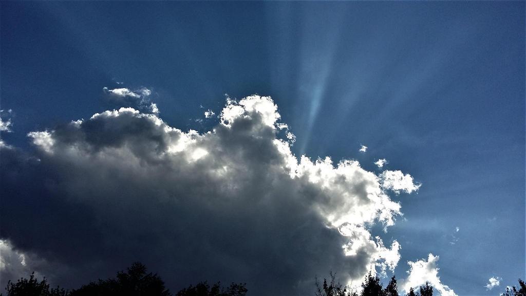 Majesty. by cumulusmediocris