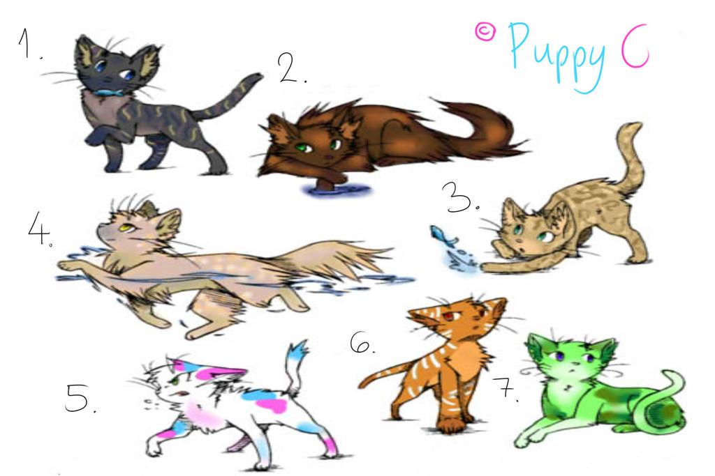 swimmer kitten syndrome treatment