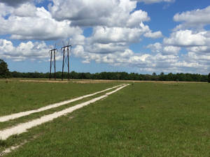 Trail at Power Lines